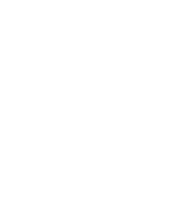 trusted-choice-insurance-agent-nc